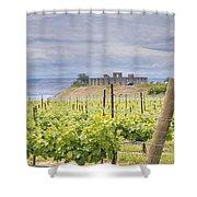 Vineyard In Maryhill Washington State Shower Curtain