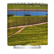 Vineyard On A Lake Shower Curtain