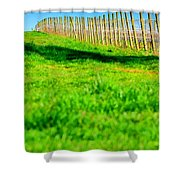 Vineyard Path 22628 Shower Curtain