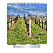 Vineyard Bodega Bay Shower Curtain