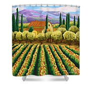 Vineyard With Olives Tuscany Shower Curtain