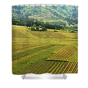 Vineyards Below Zellenberg France 1 Shower Curtain