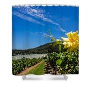 Vineyard's Companion Rose Shower Curtain