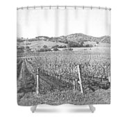 Vineyards Shower Curtain