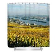 Vineyards Near A Town, Rudesheim Shower Curtain