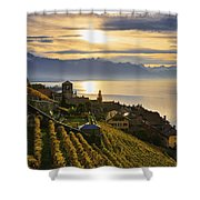 Vineyards Saint-saphorin, Lavaux Shower Curtain