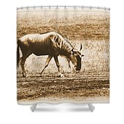 Vintage African Safari Wildbeest Shower Curtain