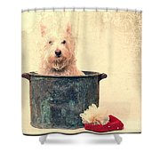 Vintage Bathtime Shower Curtain