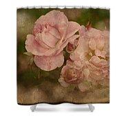 Vintage Beauties Shower Curtain