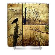 Vintage Birds Collage Shower Curtain