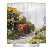 Vintage Manoa Valley Shower Curtain