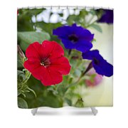 Vintage Petunia Flowers Shower Curtain