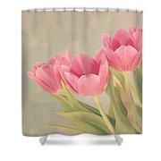 Vintage Pink Tulips Shower Curtain by Kim Hojnacki