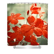 Vintage Red Flowers Shower Curtain