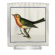 Vintage Robin Square Shower Curtain