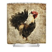 Vintage Rooster Shower Curtain