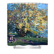 Viola Walking In The Park Shower Curtain