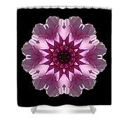 Violet And White Dahlia I Flower Mandala Shower Curtain