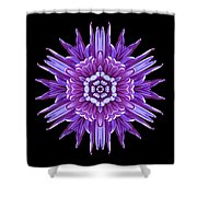 Violet Chrysanthemum Iv Flower Mandala Shower Curtain