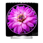 Violet Dahlia Shower Curtain