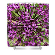 Violet Fireworks Shower Curtain