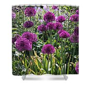 Violet Flowerbed Shower Curtain