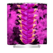 Violet Heliconia Flower Shower Curtain