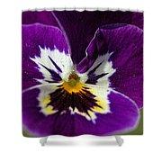 Violet Macro Shower Curtain