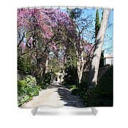 Violet Tree Alley Shower Curtain