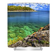 Violets At Georgian Bay Shower Curtain by Elena Elisseeva