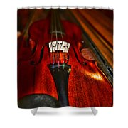 Violin Study Shower Curtain