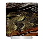 Viper Den Shower Curtain