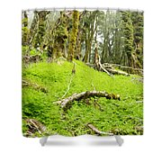 Virgin Mountain Rainforest Of Marlborough Nz Shower Curtain