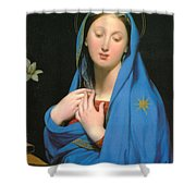 Virgin Of The Adoption Shower Curtain