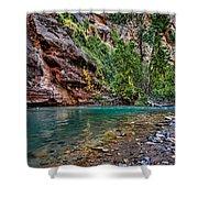 Virgin River Zion National Park Utah Shower Curtain