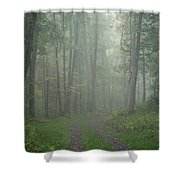 Virginia - Shenandoah National Park - Road Not Taken Shower Curtain