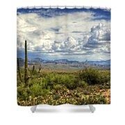 Visions Of Arizona  Shower Curtain