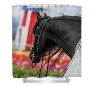 Visions Of Holland Shower Curtain