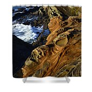 Visions Of Nature 5 Shower Curtain