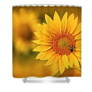 Visions Of Summer Shower Curtain