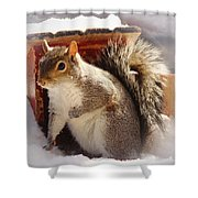 Visiting The Outhouse Shower Curtain