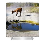 Visitor At West Thumb Basin Shower Curtain