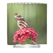 Visitor In The Garden Shower Curtain