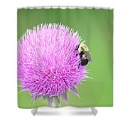 Visitor On Thistle Shower Curtain