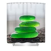 Vitality Shower Curtain by Barbara McMahon