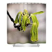 Vitalization - Featured 2 Shower Curtain