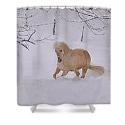 Viva Zapata Contratercero Dances In The Snow Shower Curtain