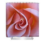 Vivacious Pink Rose Shower Curtain