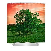 Vivid Blood Red Sky Shower Curtain