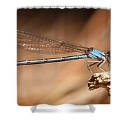 Vivid Dancer Damsel Shower Curtain